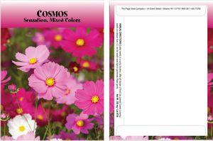 Standard Series Cosmos Seed Packet - Digital Print /Packet Back Imprint