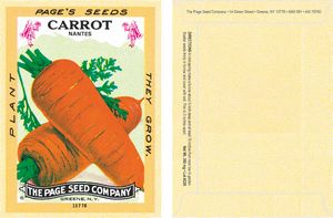 Antique Series Carrot Vegetable Seeds - Digital Print/ Packet Back Imprint