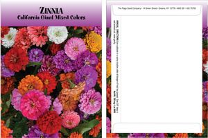 Standard Series Zinnia Seed Packet - Digital Print /Packet Back Imprint