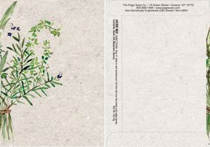 Watercolor Series Herb Mix Seed Packet - Digital Print /Packet Back Imprint