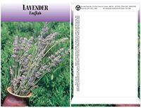 Standard Series Herb, Lavender-Digital Print/Imprint Back