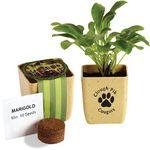 Custom Flower Pot Set w/Marigold Seeds