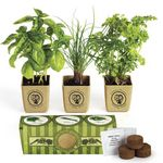 Custom GrowPot Eco-Planter Herb 3-Pack