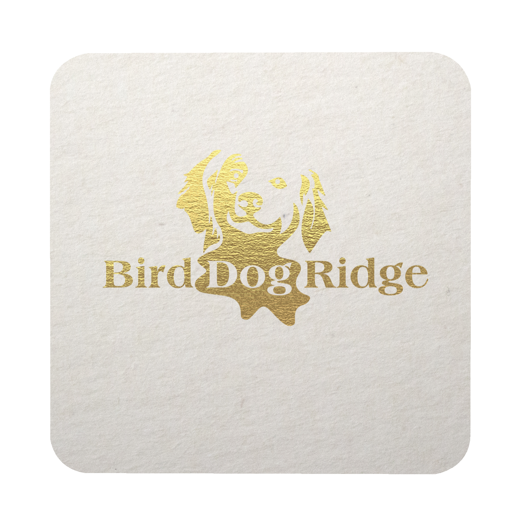 Foil Stamped 45 point, White, 3.5