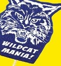 Wildcat Mascot on a Stick