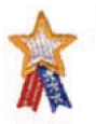 Embroidered Stock Appliques - Star w/ Ribbon