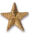 Embroidered Stock Appliques - Gold Star