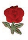 Embroidered Stock Appliques - Red Rose