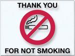 Custom V-T No Smoking Static Cling Stickers (250 per Pack)