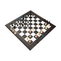 Large Vinyl Chess/ Checkers Board