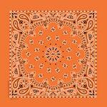 Imported Blank Orange Paisley Bandanna