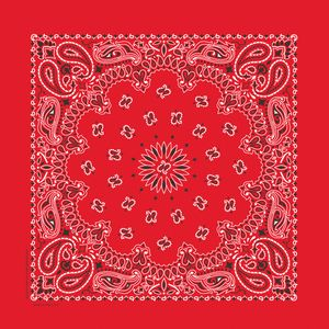 Imported Blank Red Paisley Bandanna