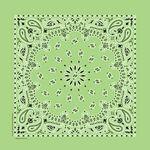 Imported Blank Lime Green Paisley Bandanna