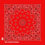 Imported Red Paisley Bandanna