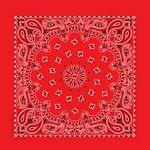 USA Made Blank Red Paisley Bandanna