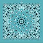 Imported Turquoise Paisley Bandanna