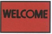 Logo PinStandard Design Indoor/Outdoor Carpet (Welcome) (Block Print) (2x3)