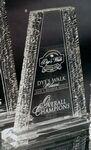 Custom Medium Clear Acrylic Chipped Tower Award (8 5/8