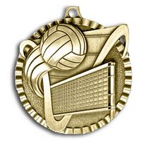 "Volleyball Stock Medal (2"")"