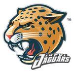 Custom Helmet & Hard Hat Decal (Up to 10 Sq. Inch)