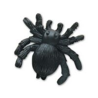 Spider Stock Shape Pencil Top Eraser