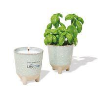 Modern Sprout Glow & Grow Live Well Gift Set - Blue Green: Herb Garden w- Basil Seeds