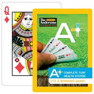 Paper Custom Design Poker Size Playing Card in 4 Color Process