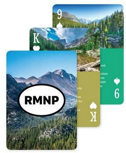 Custom Back & Faces Poker Size Playing Cards