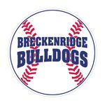 Baseball Sports Magnet