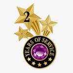 Custom 2 Years Of Service Triple Star Lapel Pin With Jewel Box