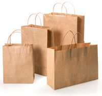 "Brown Kraft Paper Bags w/Twisted Paper Handle (8""x4 3/4""x10 1/2"")"