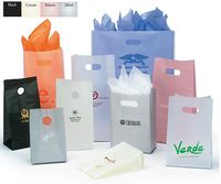"""Frosted High Density Bags w/Die Cut Handles (5 1/2""""x3 1/4""""x8 1/4"""")"""