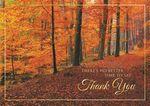 Custom Woodland Gratitude Thanksgiving Cards