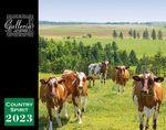 Custom Galleria Wall Calendar 2019 Country Spirit (Low Price )
