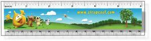 .040 Clear Plastic Rulers, InkJet Full Colour + white (1.5
