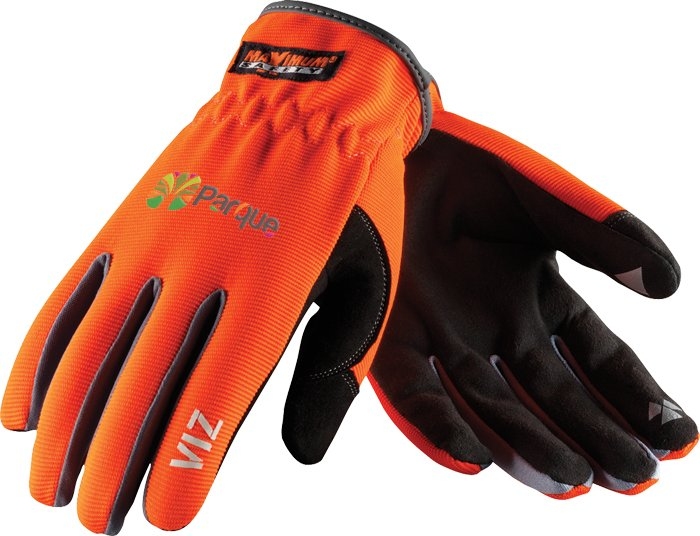 Viz by Maximum Safety, 1