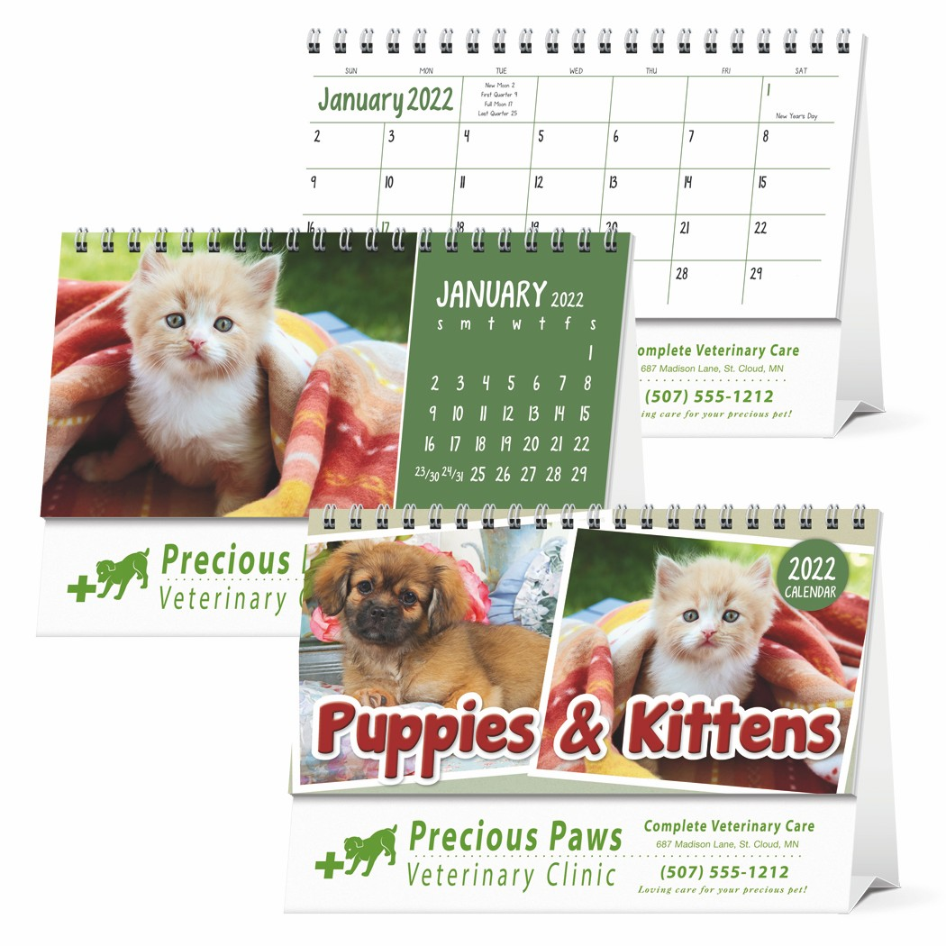 Triumph Puppies & Kittens 2020 Desk Calendar, #4259, 1 Colour Imprint