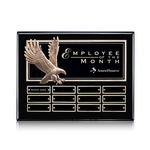 Custom Flying Eagle P/Plaque - Ebony 12 Plate