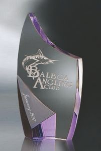 Trance Purple Optic Crystal Award