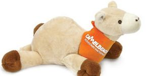 Camel Animal Themed Items -