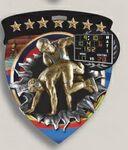 Custom Wrestling Stock Full Color Burst Medal (3