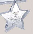 Custom Star Paperweight (5