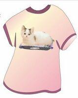 Munchkin Cat T Shirt Acrylic Coaster w/ Felt Back