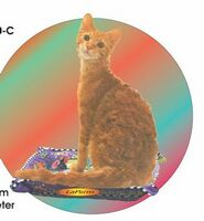Laperm Cat Acrylic Coaster w/ Felt Back