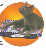 Korat Cat Acrylic Coaster w/ Felt Back