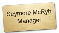 "Engravable Rectangular Plastic Name Badge (2""x3"")"