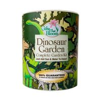 Dinosaur Garden in Eco-Friendly Grocan