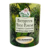 Evergreen Tree Garden in Eco-Friendly Grocan
