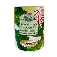 Aromatherapy Peppermint Garden in Eco-Friendly Grocan