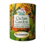Custom Cactus Garden Grocan